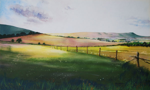 Sussex-Early-Evening-Light-by-Liz-Hankins