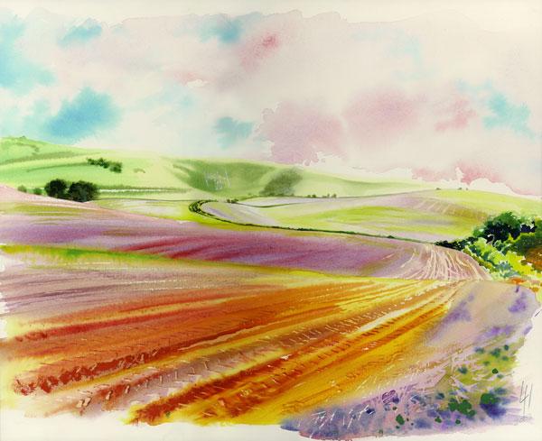 fields-at-longman-ltd-ed-print-by-Liz-Hankins.jpg